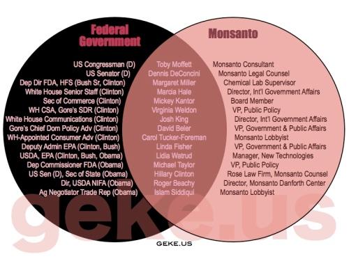 MonsantoVenn.001